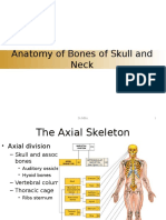 Bone of Head and Neck-Dr MBA Block 6 Ok