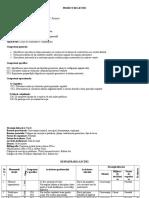 ProiectMateInspectie VIII Geo
