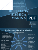 Reflexión Sísmica Marina