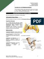 Artrología de Extremidad Inferior