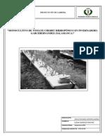 MONOCULTIVO DE TOMATE CHERRY HIDROPÓNICO EN INVERNADERO.pdf