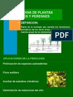 Teoria Fenologia Agrícola - Parte I