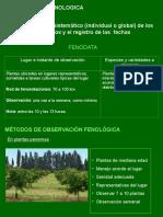 Teoria Fenologia Agrícola - Parte II