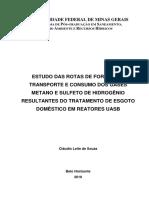 Tese_rotas de Formação, Transporte e Consumo Dos Gases Metano e Sulfeto de Hidrogênio Em Reatores Uasb