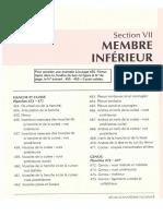 Anatomie-Netter-Membre-Inferieur.pdf