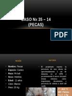 Caso Nx 35 - 14 Pecas