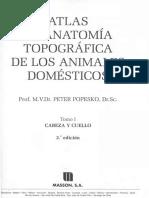 Popesko Peter - Atlas de Anatomia Topografica de Los Animales Domesticos Tomo I (SPG)