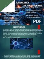 PSICOLOGÍA-NEURONAS.
