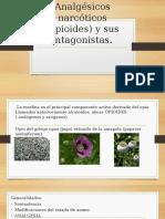 Analgésicos Narcóticos Opioides y Sus Antagonistas