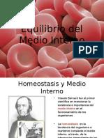 Equilibrio Del Medio Interno 1228311769895116 9