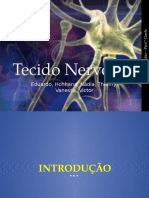 tecidonervoso-130820231626-phpapp01.pptx