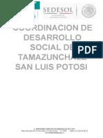 Planeacion y Organizacion de Codesol