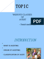 Classes of Audit