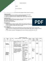 Proiect Didactic.doc Clasa a Va