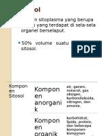 Sitosol Dan Sitoskeleton