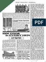 1000 Egg Hen
