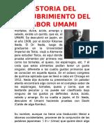 Historia Umami