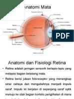 268687507-ppt-retinoblastoma