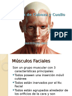 Miologia Facial