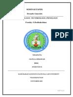 Criminology Seminar Paper