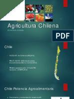 1_Agricultura_Chilena