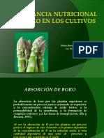 Importancia Nutricional Del Boro