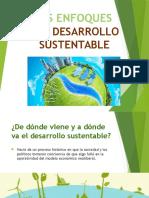 Los enfoques del desarrollo sustentable.pptx