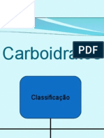 Bio Carboidratos