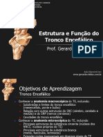 T2_Tronco_Encefalico.pdf