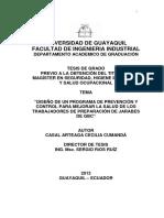 Tesis PDF Completa