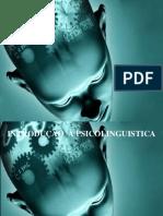 PSICOLINGUISTICA 2
