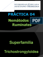 Clase Practica 4