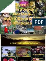 Diversidad Biologica en El Perú