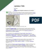 Origen Del Topónimo Chile