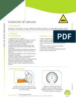12conduccion.pdf