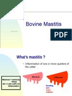 bovinemastitis-140214122837-phpapp02