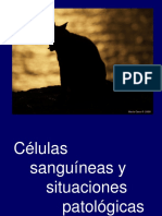 Celulas Sanguineas. GB y PLT. PG 15-16