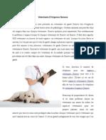 Veterinaire d Urgence Geneve