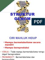 1. STRUKTUR GENOM