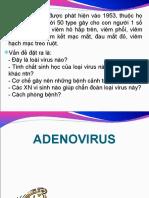 Adeno virus.ppt