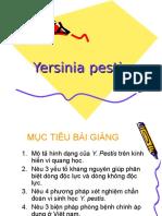 Yersinia pestis.ppt