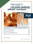 213553268-Plan-d-Affaires-Elevage-Pondeuses.doc