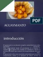 introducción-aguaymanto