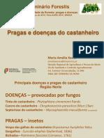 Pragas e doenças do castanheiro