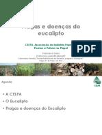 Pragas e doenças do eucalipto