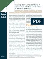 Understanding Consumer Risks in Digital Social Payments