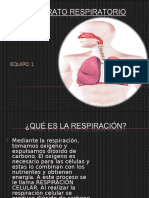 1.-El-sistema-respratorio.ppt