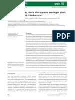 Transgenic Tomato Plants Alter Quorum Sensing in Plant Growth‐Promoting Rhizobacteria