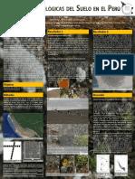 Costras biológicas del suelo en el Perú