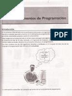 CAPITULO1 - Fundamentos de La Programación